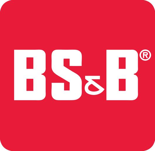 BSB_LLC_logo